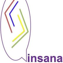 Logo Insana Onlineshop