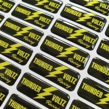 Logo Thunder voltz racing