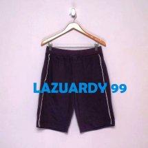 logo_lazuardy99