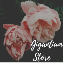 Logo Gigantium Store