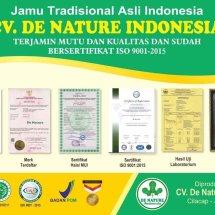De Nature_Indonesia Logo