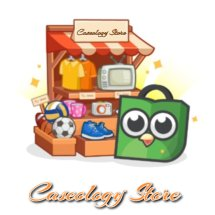 Logo Caseology Store