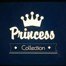 princess store. Logo