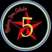 Bintang Terang Cell Logo