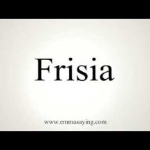 Frisia Shop Logo
