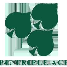 Logo PT. Triple Ace