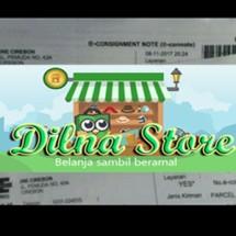 Dilna Store Logo