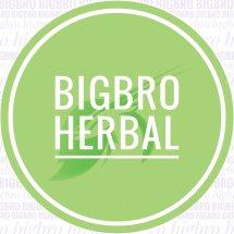 Logo BIGBRO Dropshiper