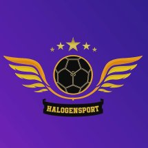 halogen_sport_mlg Logo
