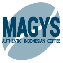 MAGYS Logo
