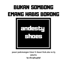 Logo andestishoes