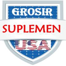 GROSIR SUPLEMEN USA Logo
