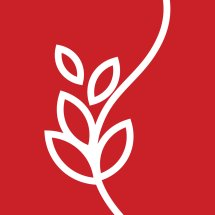TBK Bandung Logo