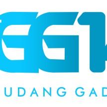 Logo gudanggadget14