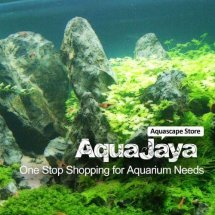 AquaJaya Bekasi Logo