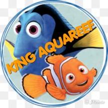 Logo KING AQUAREEF
