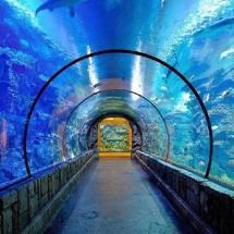 Jual Pompa Udara Aerator Aquarium 2 lubang Hikari HK-AC ...