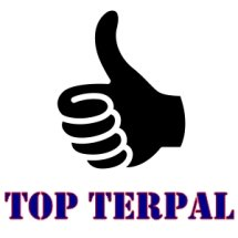 Top Terpal Surabaya Logo