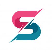 Logo Detson Shop