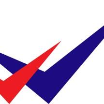 2V Online Shop Logo