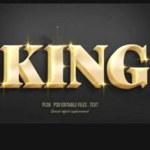 Logo KING sparepart