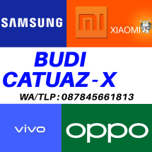 Logo BUDI CATUAZ-X