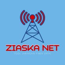 Logo ZiaskaNet