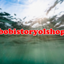 Logo bobistoryolshop