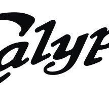 Logo Calypsoware