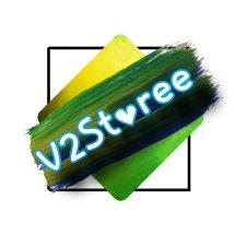 V2Storee Logo