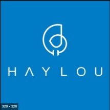Logo Haylou official store