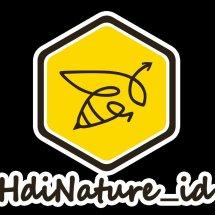 Logo CubWorld