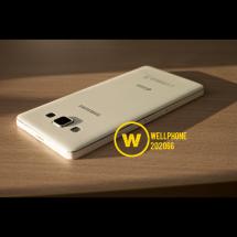 Wellphone Shop Logo