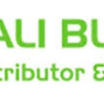 Logo Bali Blessindo