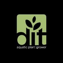 dit farm Logo