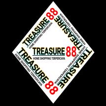 Logo Treasure 88