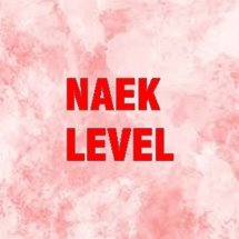 Naek Level Logo
