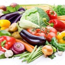 Sumber Nutrisi Logo
