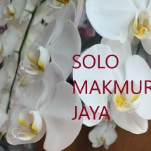 Solo Makmur Jaya Logo