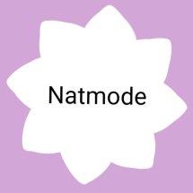Logo NAT mode