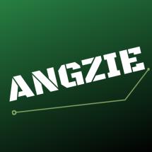 Logo Angzie net