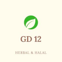 GD12 store Logo