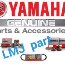 Logo LMJ MOTOR PARTS