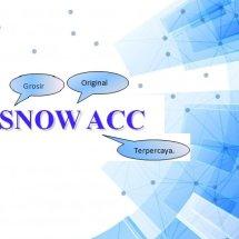 SnowAcc Logo