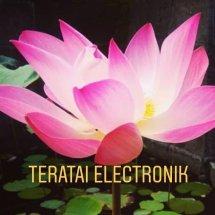 teratai electronik Logo