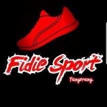 Logo FDE-Sport