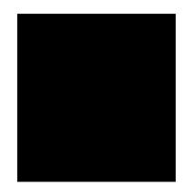 Logo Protoflex Official