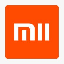 Logo MII Store
