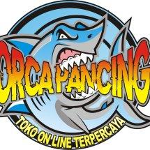 Logo Orca Pancing