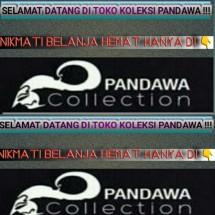 Logo koleksipandawa
